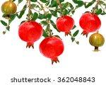 pomegranate fruit on a tree... | Shutterstock . vector #362048843