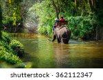 Tourist Riding On Elephants...