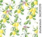 yellow lemons watercolor... | Shutterstock . vector #362392193