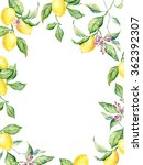 watercolor illustration wreath... | Shutterstock . vector #362392307