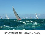 Sailing Yacht Race. Yachting....