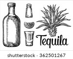 glass and botlle of tequila.... | Shutterstock .eps vector #362501267