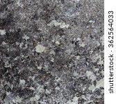 Stone Wall With Crustose Liche...