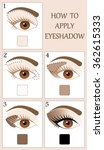 Make up tutorial set - stages of applying beige shadow on brown women eye with brow and lashes. eyeshadow apply step by step. makeup concept, vector art image illustration isolated on white background