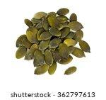 pumpkin seed | Shutterstock . vector #362797613