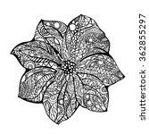 flower vector illustration... | Shutterstock .eps vector #362855297