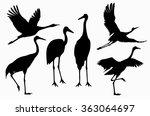 Six Shadows Of Cranes Action