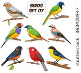bird set cartoon colorful... | Shutterstock .eps vector #363420947