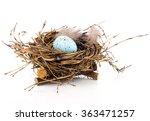 easter egg in birds nest... | Shutterstock . vector #363471257