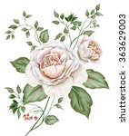 Stock photo watercolor vintage image with english roses isolated on white background 363629003