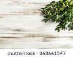easter boxwood as easter symbol ... | Shutterstock . vector #363661547