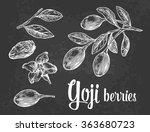 goji berries on a branch....   Shutterstock .eps vector #363680723