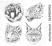 animals around the world ...   Shutterstock .eps vector #363983903
