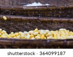 close up raw material of...   Shutterstock . vector #364099187