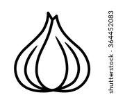 garlic bulb   allium sativum...