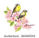 Two Song Birds On Spring...