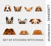 set of stickers with dogs.... | Shutterstock .eps vector #364600877