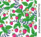 raspberries seamless pattern... | Shutterstock .eps vector #364779743