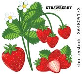 ripe strawberry vector isolated ... | Shutterstock .eps vector #364809173