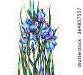 bouquet of blue irises on a... | Shutterstock . vector #364857557