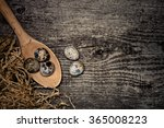 composition with quail eggs.... | Shutterstock . vector #365008223