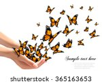 hands releasing butterflies.... | Shutterstock .eps vector #365163653