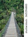 Suspension Bridges Leading To...
