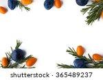 frame of rosemary   kumquat and ... | Shutterstock . vector #365489237