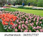 Lisse  Netherlands   Apr 19 ...