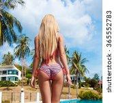 outdoor summer tropic closeup... | Shutterstock . vector #365552783