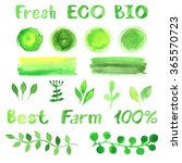 set of watercolor organic bio... | Shutterstock .eps vector #365570723