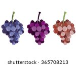grape. bunches of grapes. set... | Shutterstock .eps vector #365708213