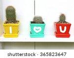 I Love You Cactus Pots...