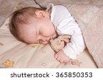five months old  sweet baby... | Shutterstock . vector #365850353