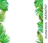 tropical leaves. floral design... | Shutterstock . vector #365964707