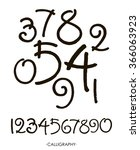 vector set of calligraphic... | Shutterstock .eps vector #366063923
