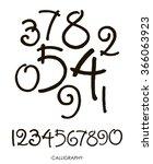 vector set of calligraphic...   Shutterstock .eps vector #366063923