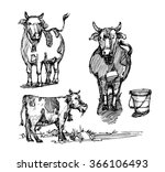 sketch of animal. sketch of cow.... | Shutterstock .eps vector #366106493