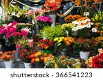 Street Flower Shop With...