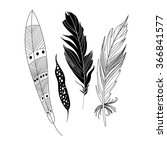 graphic black feathers close up ... | Shutterstock .eps vector #366841577