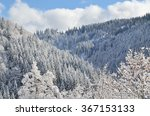 trees covered in snow in the... | Shutterstock . vector #367153133