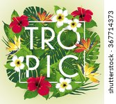 tropic and exotic beautiful... | Shutterstock .eps vector #367714373