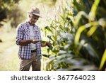 happy farmer in the field... | Shutterstock . vector #367764023