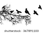 branch of a tree and flying... | Shutterstock .eps vector #367891103