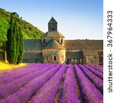 abbey of senanque and blooming... | Shutterstock . vector #367964333