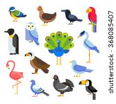 Birds Vector Set. Birds...