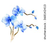 the new view of orchid... | Shutterstock . vector #368142413