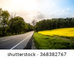 Country Road In Summer Field....