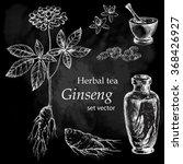 ginseng  botanical drawing.... | Shutterstock .eps vector #368426927