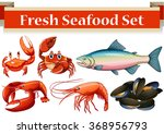 different kind of fresh seafood ... | Shutterstock .eps vector #368956793
